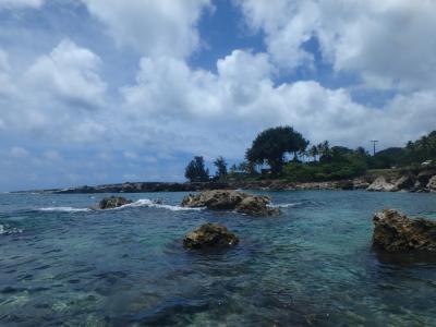 2016 Hawaii ビーチ巡りでのんびり パート?