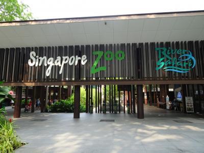 超ハード 7days in Singapore ~(´∇)ノ~ ⑦動物満載の一日・・・