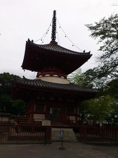 川越(2)喜多院など