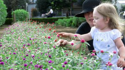 Japan トーニャの休日(2−1) 花摘みの小川農園ほか