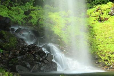 涼を呼ぶ滝巡り♪ 森の妖精さんこんにちは 郡上阿弥陀が滝&山の会の田立の滝