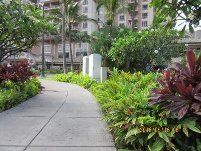 陰陽道  ハワイ・オアフ島・西ワイキキ waikiki Ilikai Hotel & Luxury Suites、Hilton       2016 05