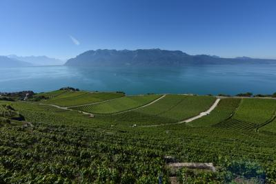 スイス・イタリア旅行2016 (3)   レマン湖さん、さようなら (><;)  ベルン⇒メンリッヒェンへ