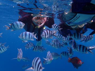 沖縄の海は美しい