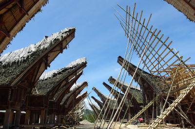 インドネシアの旅★Sulawesi Selatan :: Tana Toraja