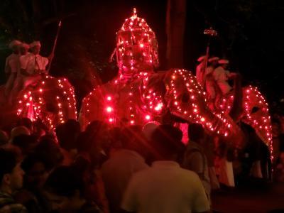 母娘旅・スリランカ7~ペラヘラ祭の夜(キャンディ)