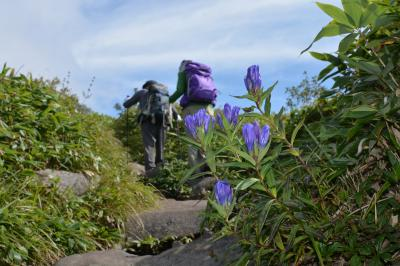 日本200名山、秋の飯縄山でオヤマリンドウを愛でる!