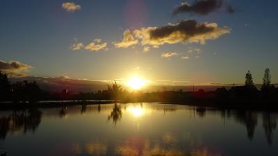 夜明けの散策 伊丹市鴻池・・・季節の変わり目を感じる散歩でした  下巻。