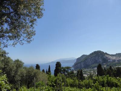 夏の優雅な南イタリア周遊旅行♪ Vol339(第18日) ☆Isola d'Capri:優雅なカプリ島の日帰り旅♪ オープンカータクシーでアナカプリへ♪