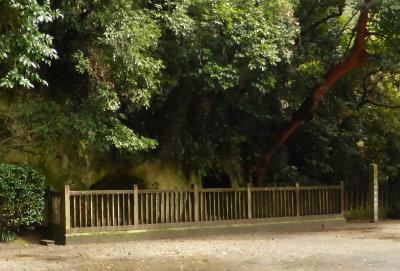 鹿児島の黒豚を目指して・・(^_^)v (その4・西郷隆盛洞窟)