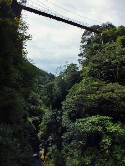 四国一の高さを誇った歩道吊橋を擁す渓谷