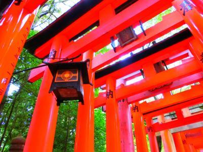 お久しぶり京都☆2016(伏見稲荷神社&美食♪)