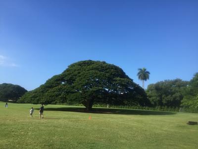 初めてのハワイ旅行♪親娘2人旅♪5日目!