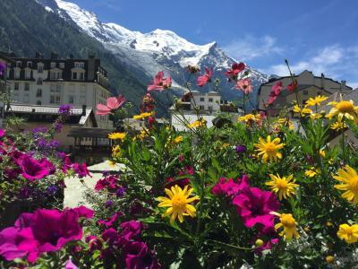 2016 スイス名峰を巡る⑤