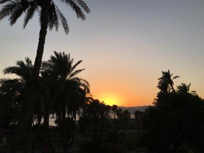 中東で物語のような体験をした女子一人旅 □ ヨルダン #4 アカバ
