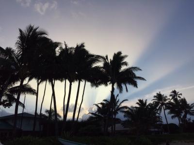 子連れ(5歳と3歳)ハワイ旅行 〜B級グルメの旅〜2
