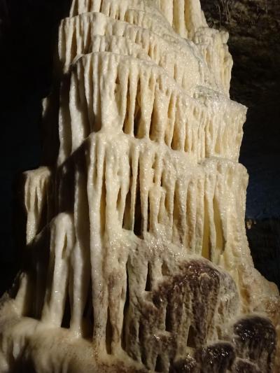 クロアチア旅行記(ちょびっとスロベニアも)2(ポストイナ鍾乳洞)