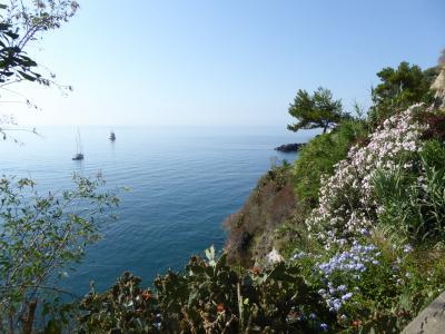 夏の優雅な南イタリア周遊旅行♪ Vol400(第21日) ☆Isola d'Ischia/S.Angelo:「Hotel Miramare Sea Resort」の「Parco Termae」へ走る♪