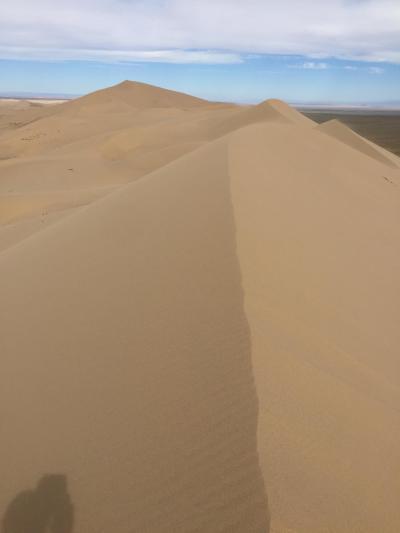 ★最も砂漠らしい景色が広がるホンゴル砂丘へ