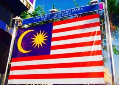 マレーシア    コタバル   大 ねずみ    2013