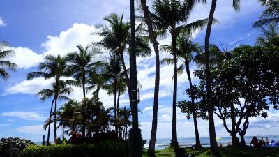 3回目のハワイ島