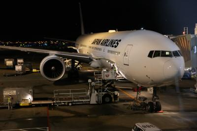JL771便でシドニーへ 出発編