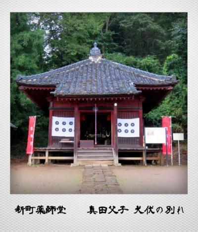 老神温泉  〜真田父子 犬伏の別れの地と金山城跡〜