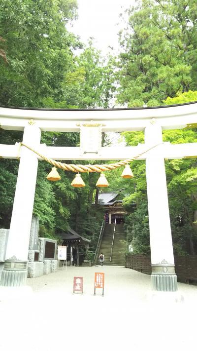 長瀞 宝登山神社