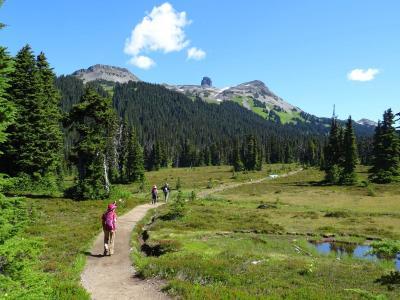 カナダ ウィスラー ハイキング 2016夏:08/12::湖と氷河の絶景 ガリバルディレイクトレイル