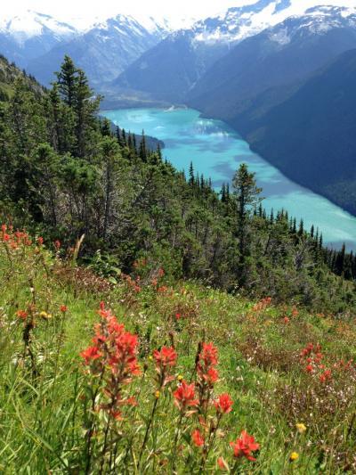 カナダ ウィスラー ハイキング 2016夏:08/13::氷河湖を眺めるハイノートトレイルを中心に歩く