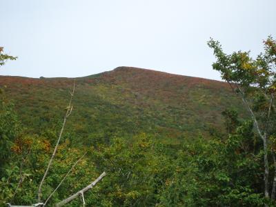 栗駒山の紅葉がみたくて・・・