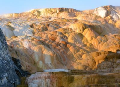 世界初の国立公園 イエローストーン国立公園ってどんな所よ?・・・・で くっつき虫で 現地ツアー参加
