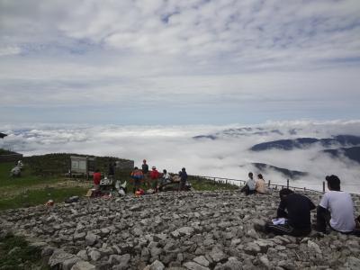 日本百名山伊吹山での雲海、伊吹牛乳、カレー、近江紅茶