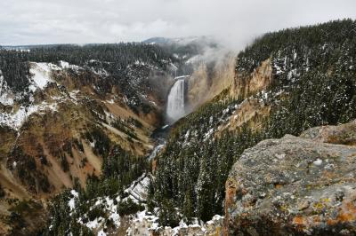 Salt Lake, Yellowstone, Grand Teton そして L.A その3:Yellowstone 2