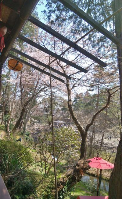 3年前の厳美渓は寒かったですが、今年の春は桜がこれから咲き始めるところ...
