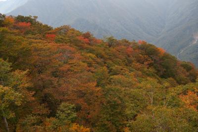紅葉にはちょっと早い谷川岳