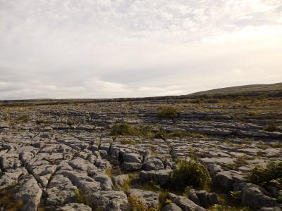 Day 5-2 私にとってのヨーロッパを訪ねて ~アイルランド旅行記~(バレン高原)