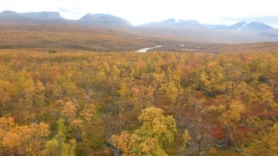 標高1169mのニューラ山からアビスコの紅葉・黄葉を見下ろす