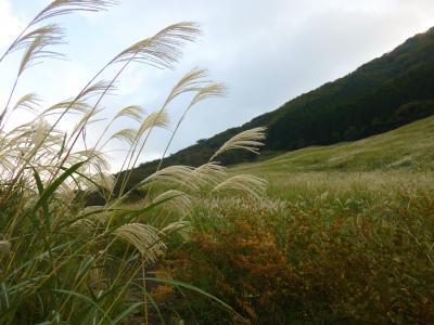 箱根・・秋のスイーツが食べたい!ついでにススキ野原を散歩。