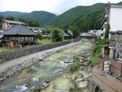 母とのんびり湯治旅・その1.湯西川温泉.金井旅館に泊まる。