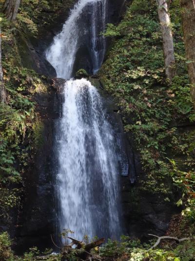 奥入瀬の渓流に沿って,銚子大滝から石ヶ戸休憩所までハイキングしました。