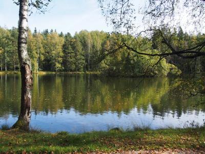 2度目のフィンランドはヘルシンキで暮らすように旅しよう ♪     その5  ハメーンリンナへ1泊2日のショートトリップ!  国立公園の森を歩く