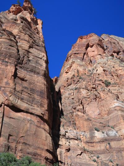 アメリカ西部10 ザイオン国立公園;ハイキング ☆ビッグベンド⇒ウィーピングロック