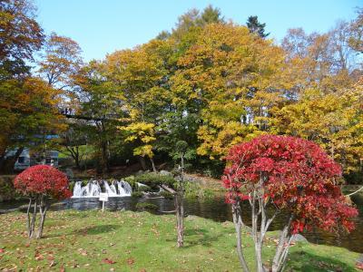 紅葉の北海道 ふきだし公園 京極町