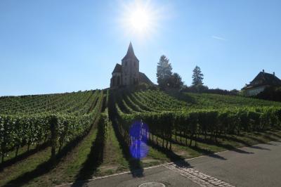 アルザスワイン街道への旅(フランスの美しい村巡り)その3