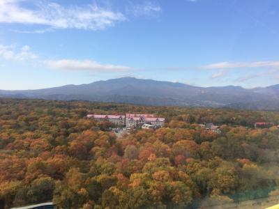 秋のグリーンプラザ軽井沢とおもちゃ王国