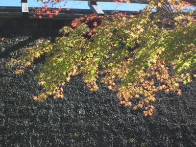 三州・足助 早秋の色づく香嵐渓から八丁味噌の里・岡崎へぶらぶら歩き旅-2