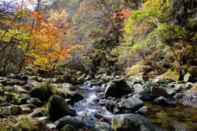 清里高原おすすめハイキング~東沢渓谷~
