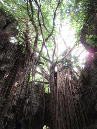 癒されたくて沖縄・南部観光へ