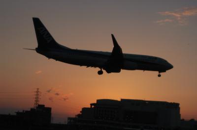 伊丹空港千里川土手での飛行機撮影 絶景の飛行機撮影ポイント堪能する